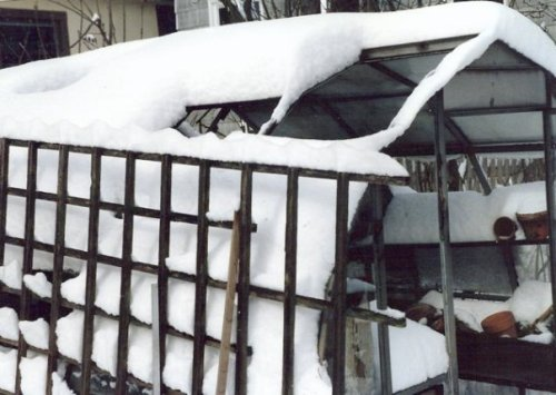 winter 1989.  The greenhouse had fallen into disrepair under my watch.