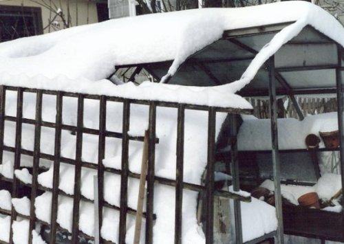 winter 1989.  The greenhouse had fallen into disrepair under my watch.