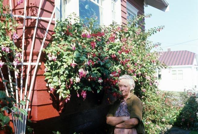 Gram S Garden Tangly Cottage Gardening Journal