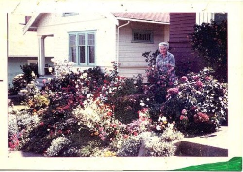 "Gram in her front garden. mid 60s, ""the rockery"""