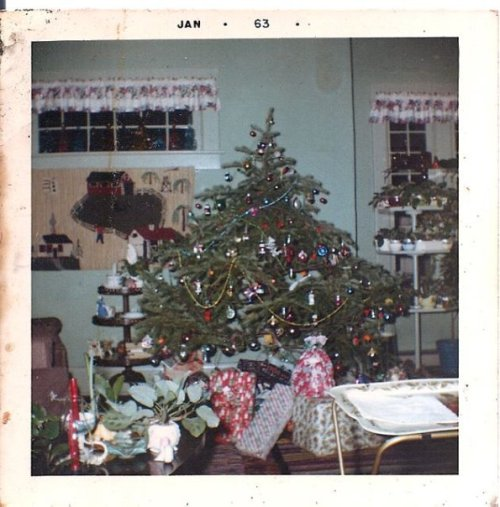 Christmas 1963; you can just see some her trays of African violets to the right. My mother had offspring of those same violets with her at Golden Sands Assisted Living.