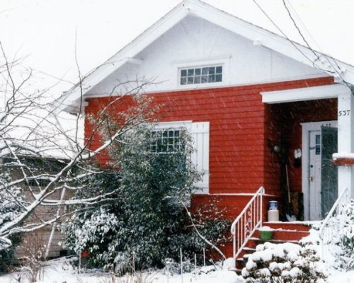 winter 1990; I had replaced the azaleas with black bamboo.