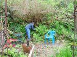 Allan pruning