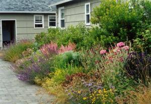 Anchorage courtyard