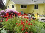 Cheri's garden