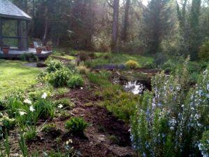 front of pond garden