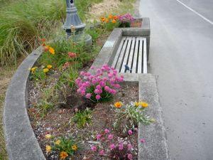 Lisa's memorial planter