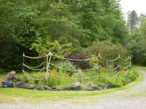 Jena's garden