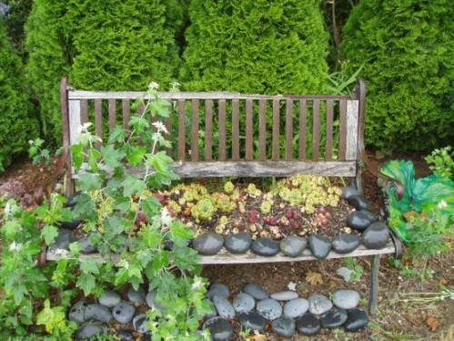 planted bench at Dragonfly Farms nursery