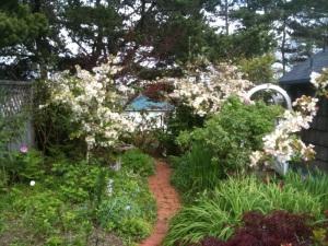 Jo's garden in spring bloom