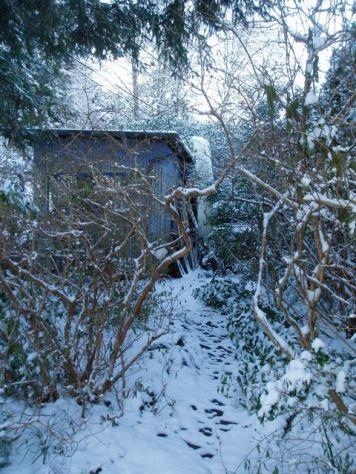 fuchsia walk, silver shed