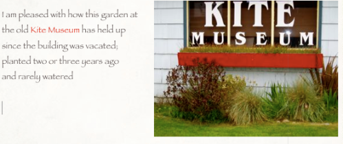 Long ago, it was the Kite Museum and we had a sweet little garden there.