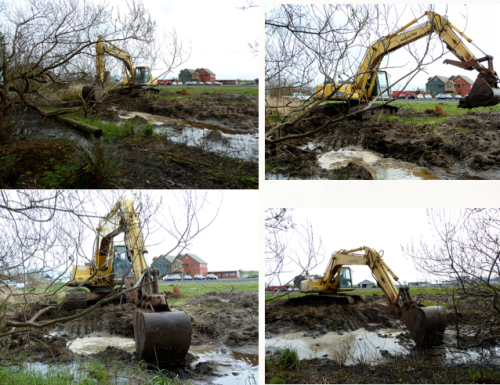 skillful digging