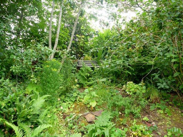Morrow Garden Tangly Cottage Gardening Journal