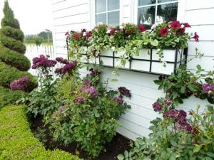 and its windowbox