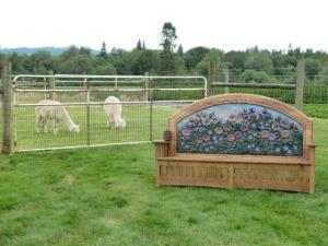 alpacas and bench