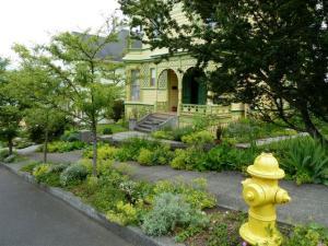 colour coordinated garden