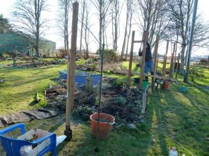 11 January, building the arbour