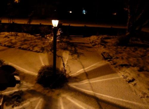 lamp post in snow