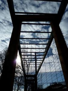 arbour and sky