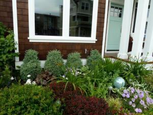 neighbour's front garden