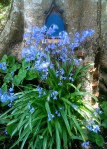blue door (in spring)