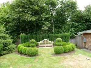 boxwood circle