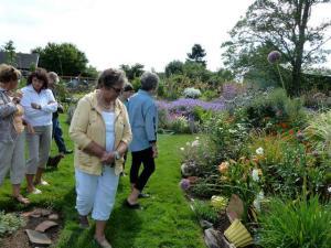 into the back garden