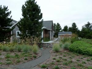 a Steve Clarke garden