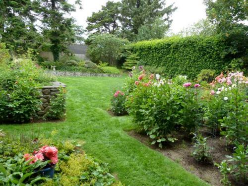 To our right, a big dahlia garden, and head, lawn, hedges, rock walls.