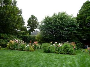 Partway across the expansive lawn with dahlia garden at one end.