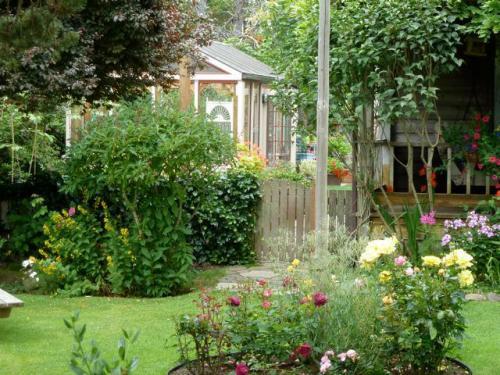 detail of dreamy garden
