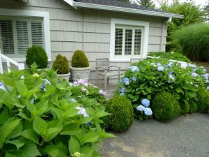 front porch with hydrangeas
