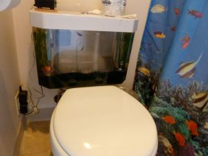 Dr Suess fish tank toilet