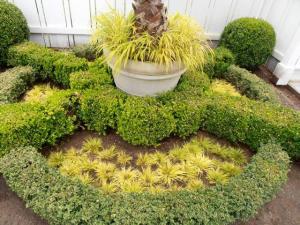palm planter detail