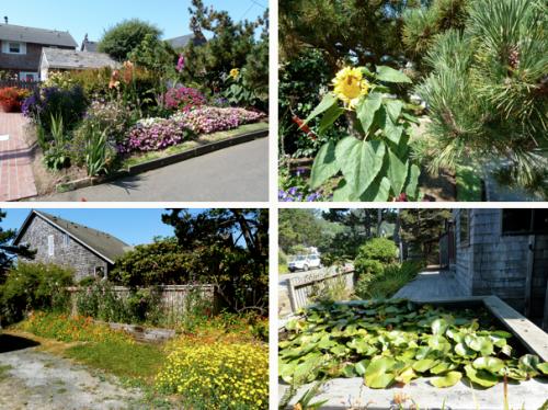 gardens in passing
