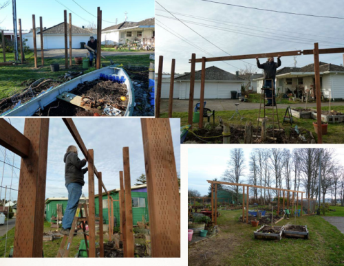 building the arbour, 11-13 January, 2012