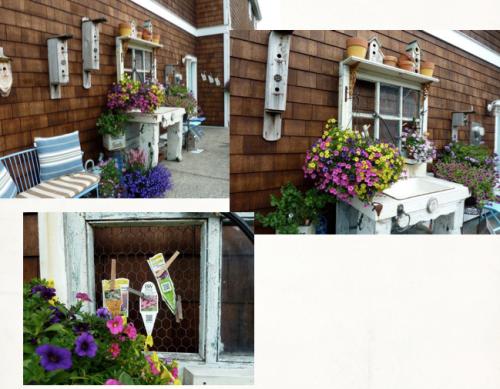 neighbour's potting bench