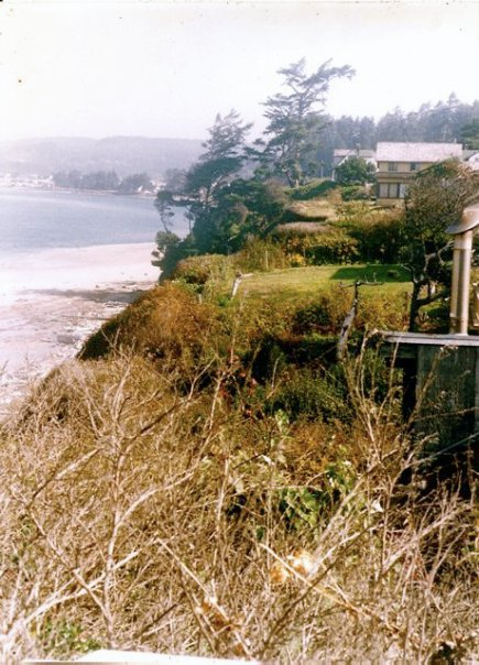 view from the Alsea room in the Cliff House