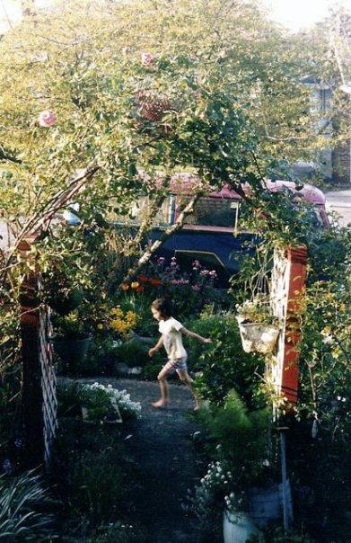 my last photo of my Seattle garden