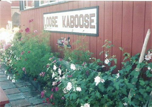 more flowers at the Kaboose, 1997