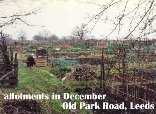 I was thrilled to see allotments (community gardens).