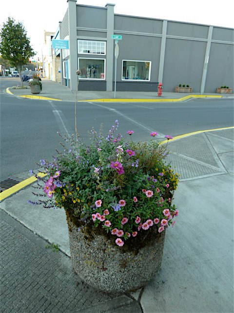 10 October, by Ilwaco Antique store, looking toward Azure Salon
