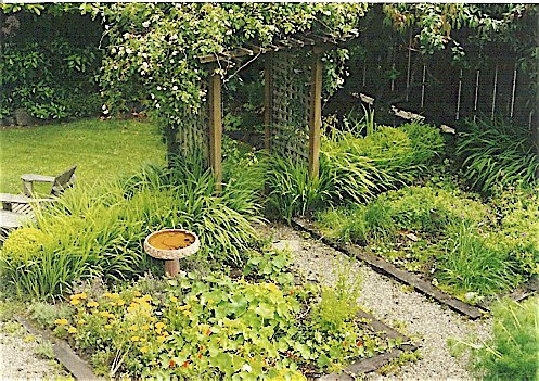 herb beds, Shelburne back garden, 2000