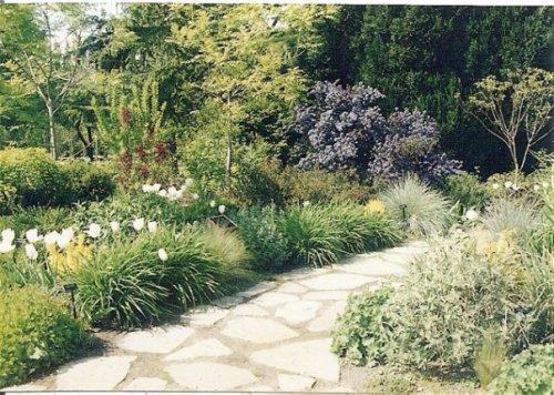 Bellevue Botanical Gardens 1996