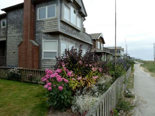 another amazing garden along the beach frontage road