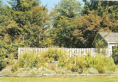 KBC garden 1998
