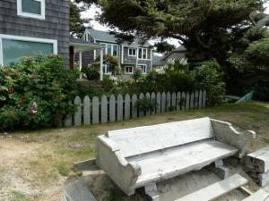 In front of the garden, a bench by the sandy road.