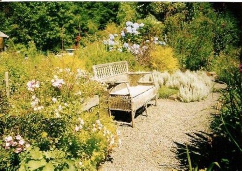 In Beth's garden