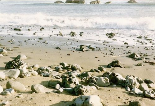 Cape Blanco: more cool rocks for candleholders